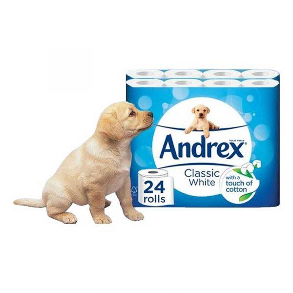 White Andrex Toilet Roll (24)