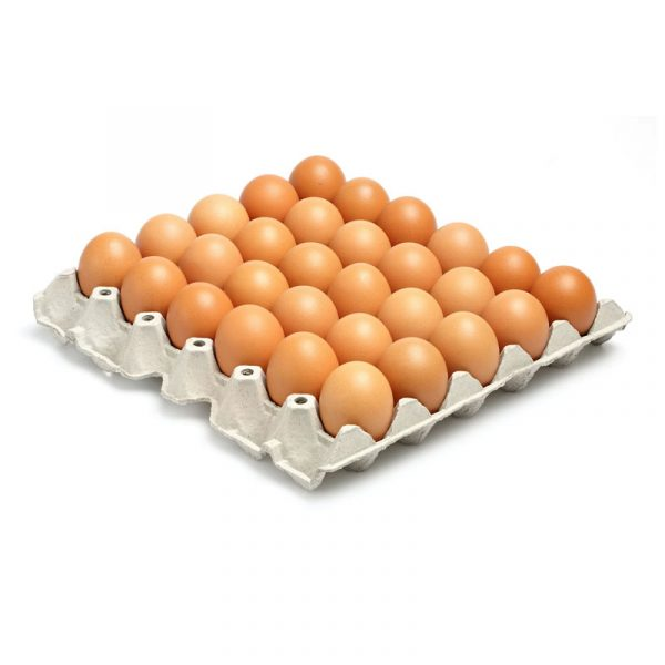Large Fresh English Eggs (180x64g)