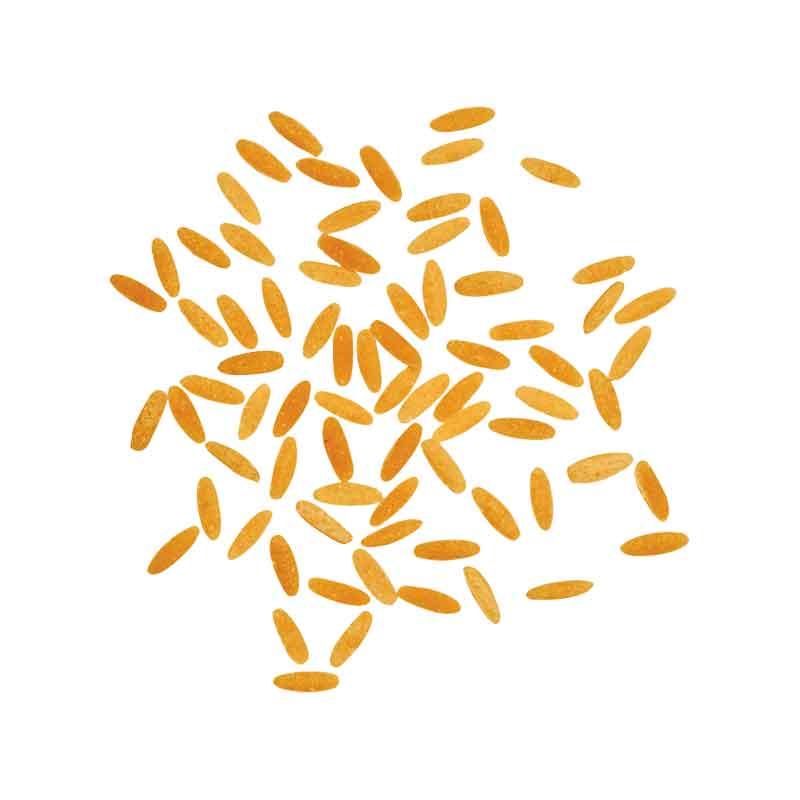 Granarolo Puntine Rice Shape no.40 (500g)