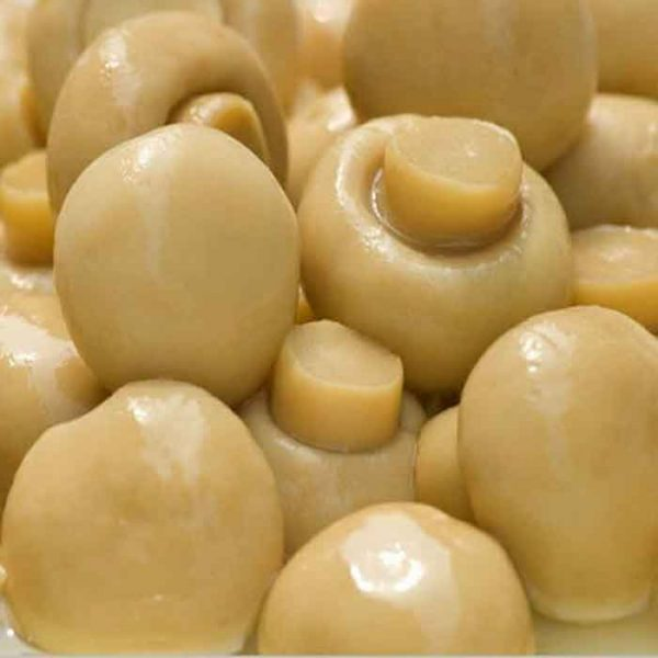 Button Mushrooms – canned (2.6Kg)