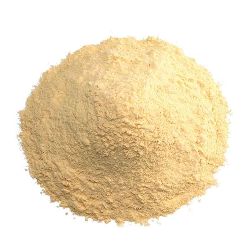 Garlic Powder (500g)